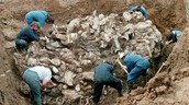 Mass Grave Uncovered