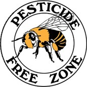 Pesticides Not allowed