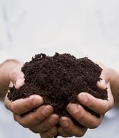 Rich fertile soil