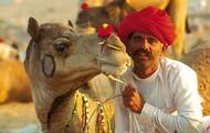 Rajasthan The Land Of King