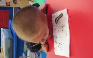 Carter listening to the worms' bristles!