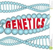 Why Is Genetic technology Good?