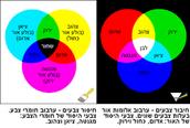 איזה צבע מתערבב מה הופך למה