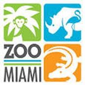 Zoom Miami