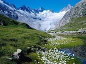 About Switzerland