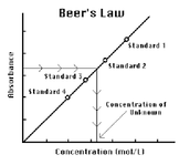 What is Beers Law