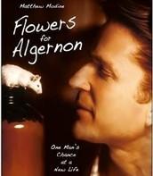 """Flowers for Algernon"" Complete!"