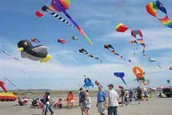 Kite Flying contest
