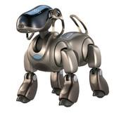 Pet Robot Dogs.