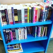 TONS of new books for the library!