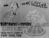 Bert Ducks and Covers