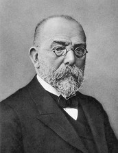 Robert Koch research bacteriolgy