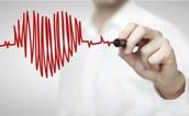A corto plazo: Aumento en frecuencia cardíaca