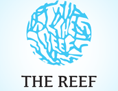 we are The Reef