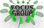 Focus Groups and Case Studies
