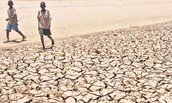2011 Kenya Drought