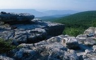 The plateau peak