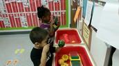 Exploring pumpkins and gourds