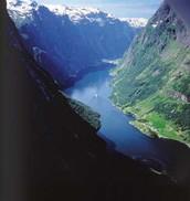 Fjord Estuary