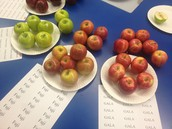 and sample different types of apples.