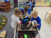 Dirt and bugs