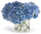 Blue Arrangement