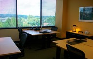 Large Office Suites