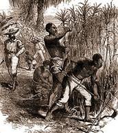 2.Slavery