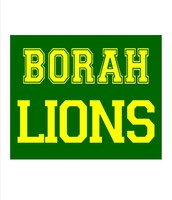 Borah Basketball Camp