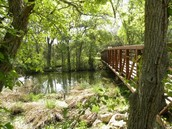 This is what brushy creek park looks like now.
