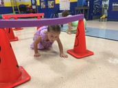 P.E. Obstacle Course