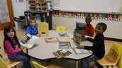 Reading books about habitats