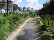 Río Guiare