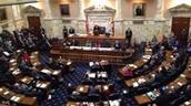Article I - Legislative (Lions)