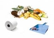 Lixo úmido (orgânico)