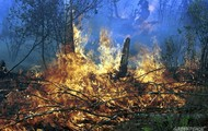 A forest fire in Thailand