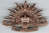 The ANZAC badge