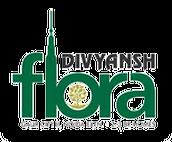 Divyansh Flora