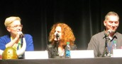 Veronica Roth, Gayle Forman and James Dasher