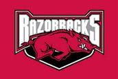 3.) University Of Arkansas
