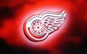 Detroit Red Wings?