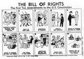 The 1st ten amendments