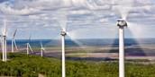 Wind Renewable