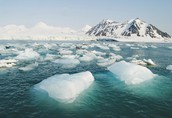 The arctic is a harsh, beautiful, and a contaminated land.