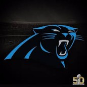 """The panthers are one of the most successful teams in the NFL.""(""Super Bowl Week Panthers Quotes 2/2"")"