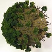 O desmatamento se alastra por toda a Terra.