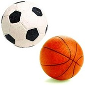 Come Shoot Some Hoop And Score The Goal!!!
