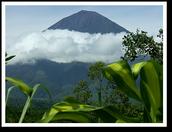 The Bali Volcano