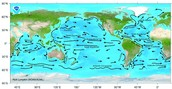 What is a ocean current?