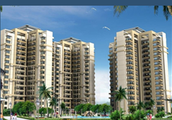 Below please find the details of Resale Units in Sidhartha NCR ONE & NCR GREEN